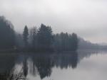 Niebla entre los árboles del lago