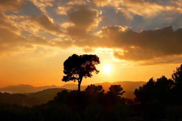 El sol iluminando el cielo