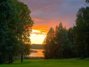 Postal: Lago rodeado de árboles