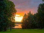 Lago rodeado de árboles