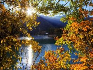 Postal: Rayos de luz sobre el agua