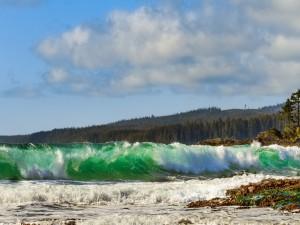 Ola de mar verde