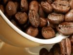 Granos de café tostados