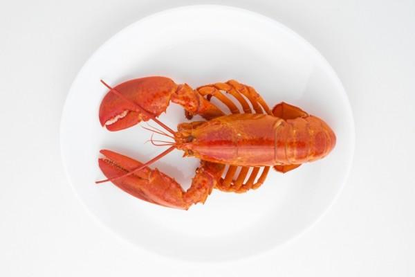 Cangrejo de río en un plato