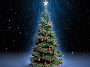 Postal: Arbolito de Navidad vestido con bolas rojas y cintas doradas