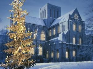 Árbol de Navidad iluminado a la entrada de una casa