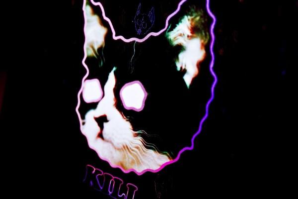 Gato de neón