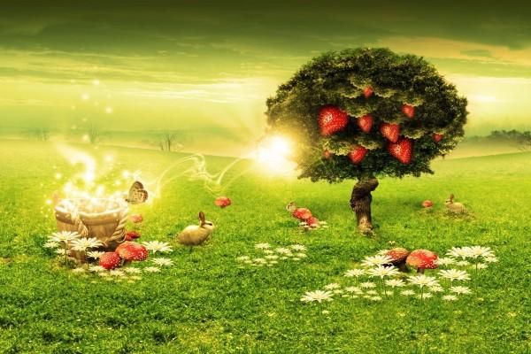 Naturaleza màgica
