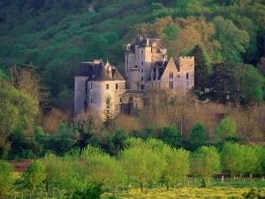 Postal: Castillo rodeado de árboles verdes