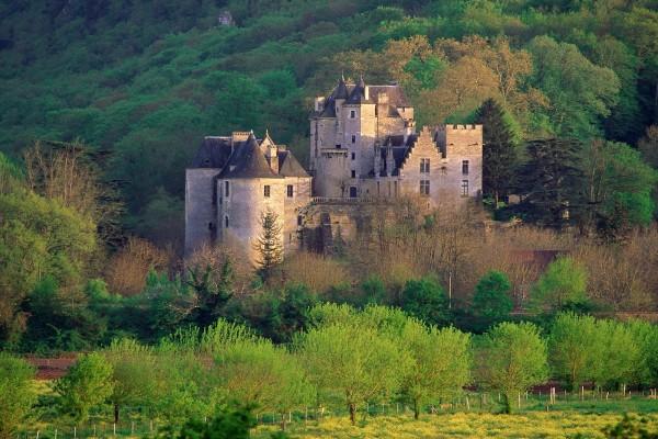 Castillo rodeado de árboles verdes
