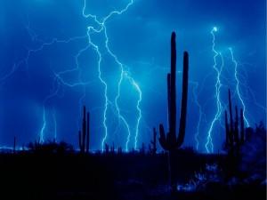 Postal: Rayos azules cerca de los cactus