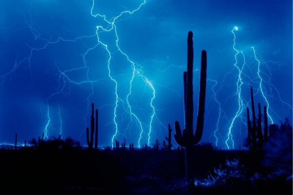 Rayos azules cerca de los cactus