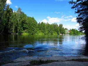 Postal: Río con árboles verdes en sus orillas