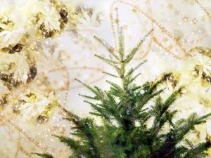 Árbol de Navidad listo para decorar