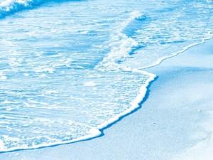 Postal: Orilla del mar
