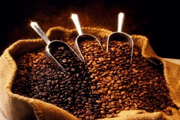 Tres variedades de café