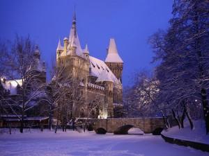 Postal: Castillo de Vajdahunyad, en City Park (Budapest, Hungría)