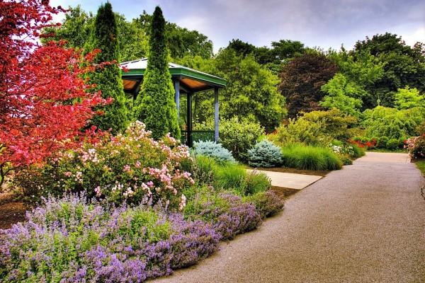 Un jardín lleno de flores
