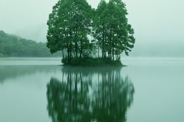 Una pequeña isla en el centro del lago