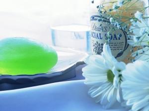 Postal: Jabón verde