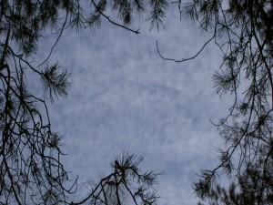Postal: Nubes en el cielo