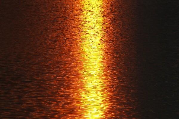 La luz solar proyectada en el agua