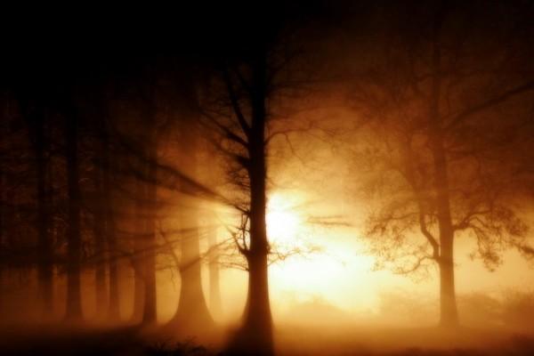 Niebla fantasmal