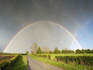 Postal: Arcoíris en una carretera