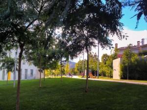 Postal: Saliendo al parque