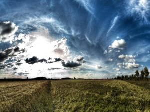 Nubes sobre un campo de hierba