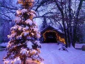 Árbol de Navidad en un paisaje nevado