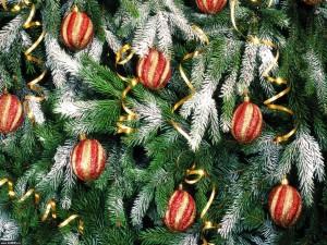 Postal: Bolas y cintas doradas en el árbol de Navidad