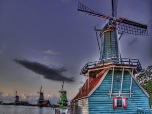 Postal: Molinos de colores en Holanda