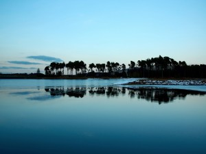 Palmeras y aguas azules