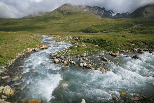 Río con piedras