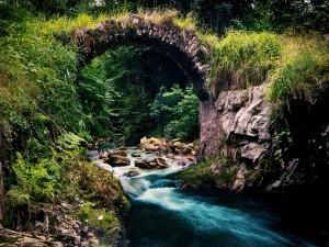 Postal: Río bajo un pequeño puente