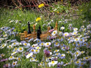 Tablero de ajedrez entre flores