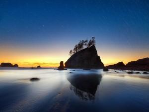 Estrellas en el cielo sobre la playa