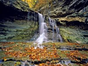 Cascada con hojas de otoño