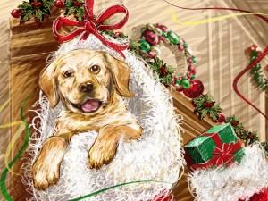 Postal: Perro en un calcetín de Navidad