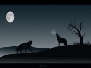 Lobos aullando a la luna en la noche oscura