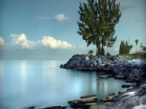 Postal: Piedras en la orilla