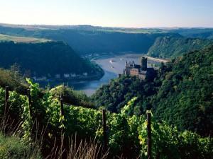 El río Rin