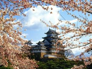 Castillo Himeji, Japón