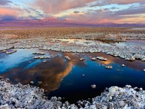 Postal: El Salar de Atacama, en Chile. Al fondo, el volcán Licancabur.