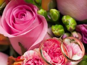 Rosas y anillos para una boda