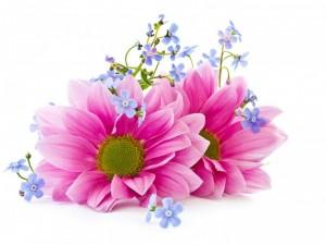 Postal: Un ramo de flores