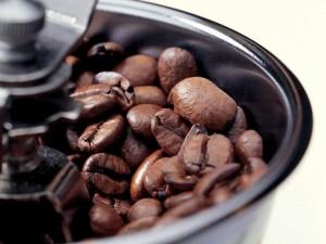 Granos de café para moler