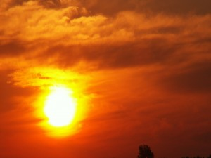 Postal: El sol en el cielo rojizo