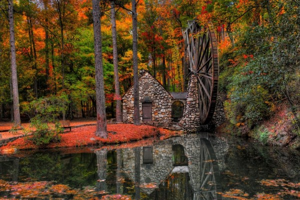 Casita con un molino de agua en el bosque